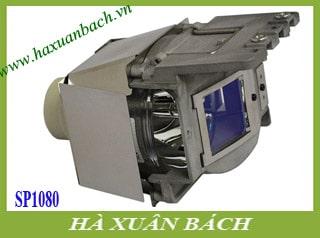 Bóng đèn máy chiếu Infocus SP1080