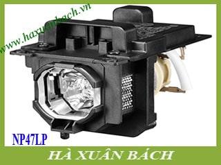 Bóng đèn máy chiếu Nec NP-MC442X