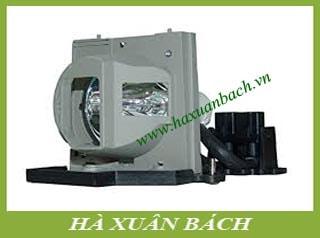 Bóng đèn máy chiếu Acer EC.J3901.001